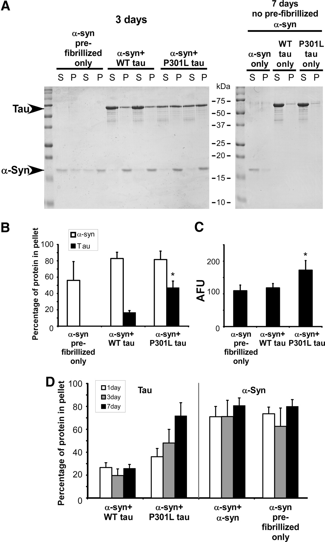 Induction of Intracellular Tau Aggregation Is Promoted by α