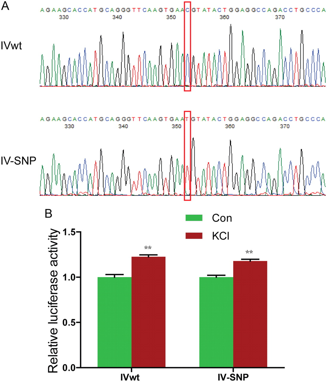 Specific Regulation Of Nrg1 Isoform Expression By Neuronal Activity Figure 28 8 Darlington Pairs Circuit A Pair Can Download