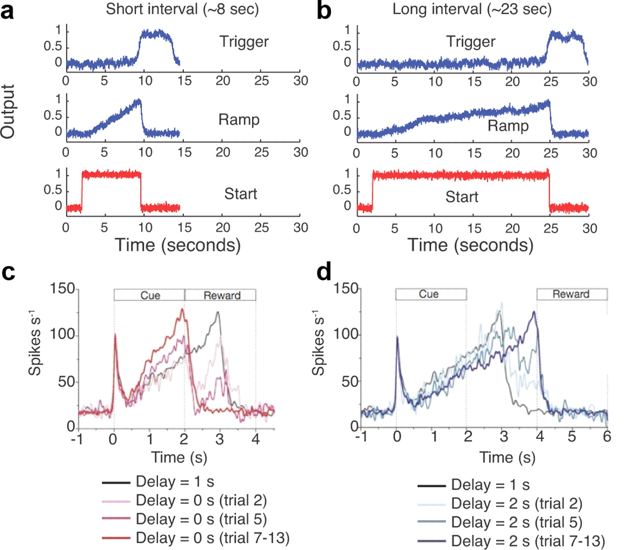 A Model Of Interval Timing By Neural Integration Journal Longintervalpulsegeneratorcircuitdiagramgif Download Figure