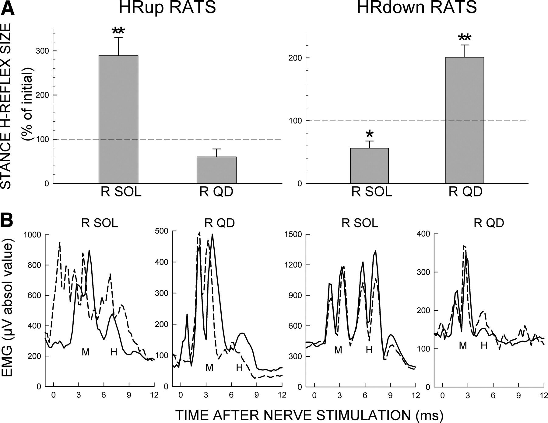 Operant Conditioning of Rat Soleus H-Reflex Oppositely