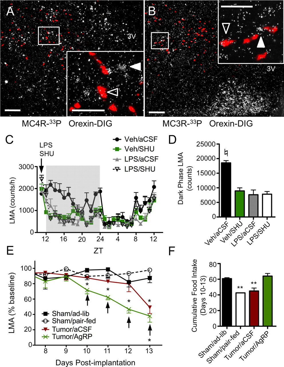 Inflammation Induced Lethargy Is Mediated By Suppression Of Orexin Snap Circuitsr Light 175 Fiberopticcircuit Download Figure