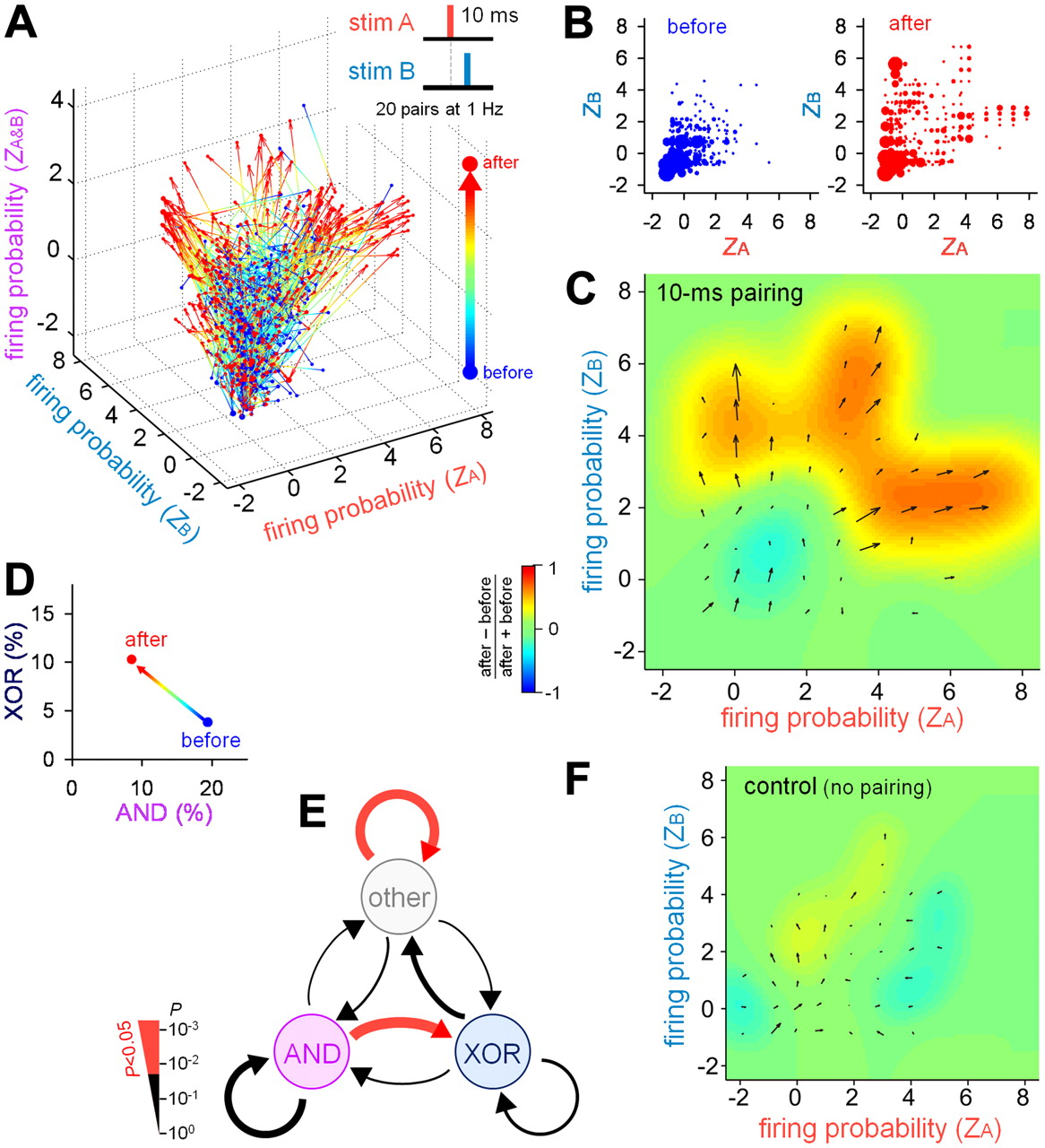 Hippocampal Polysynaptic Computation | Journal of Neuroscience
