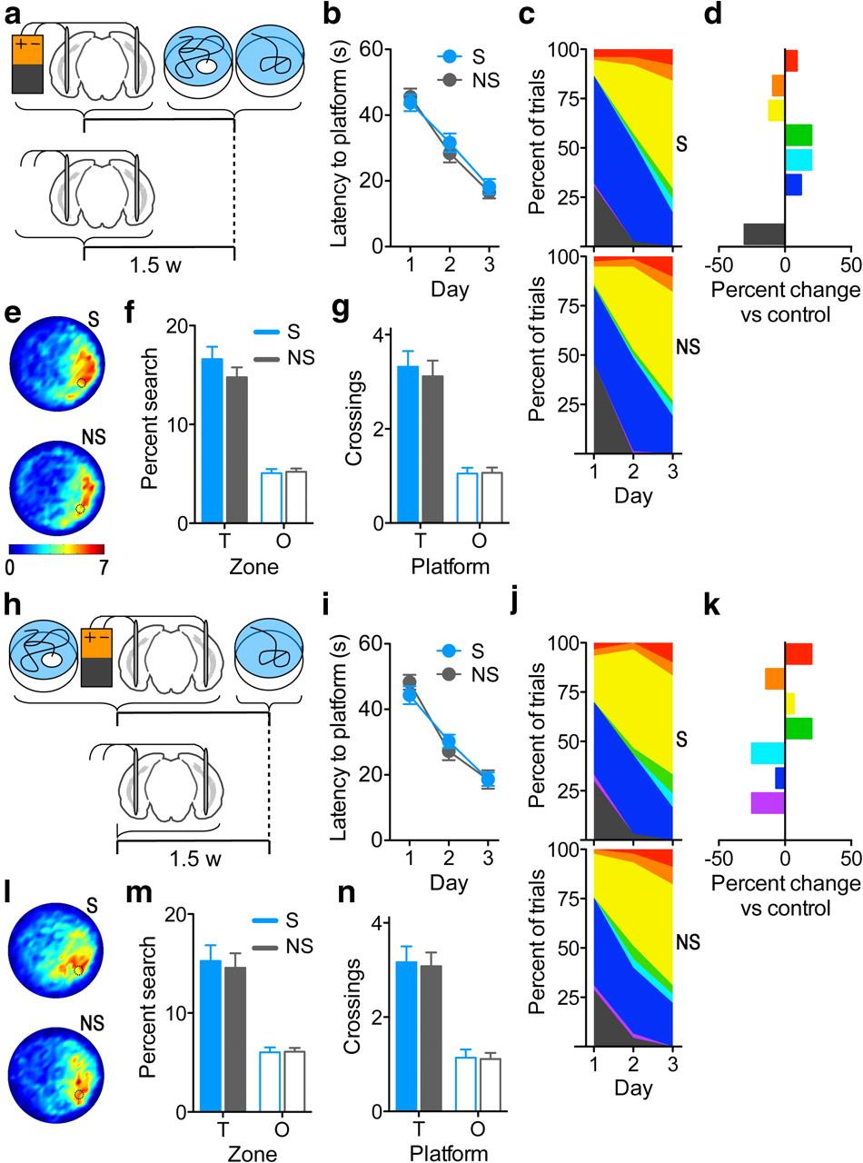 Stimulation of Entorhinal Cortex Promotes Adult Neurogenesis