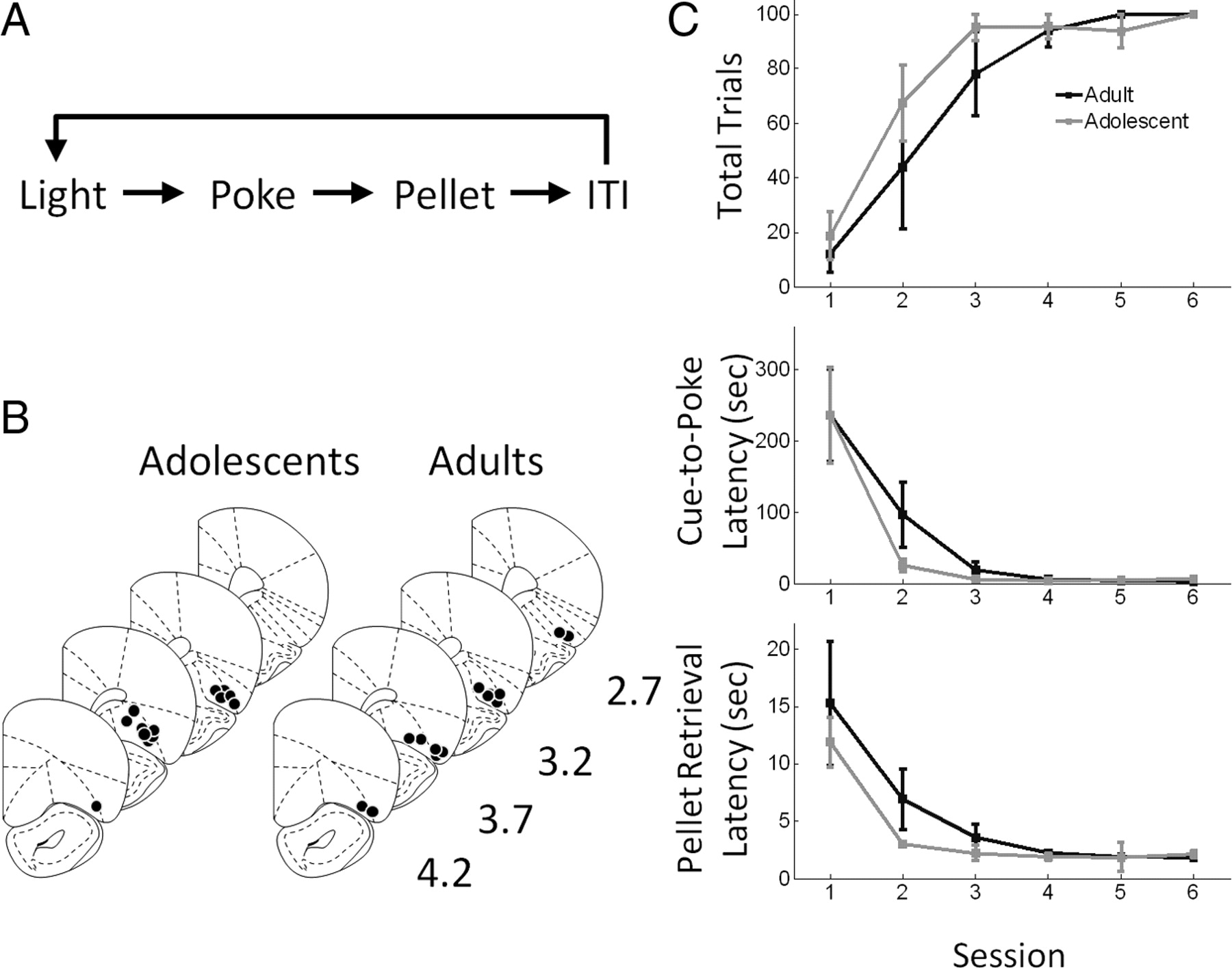 reduced neuronal inhibition and coordination of adolescent Singer Machine Model Numbers download figure