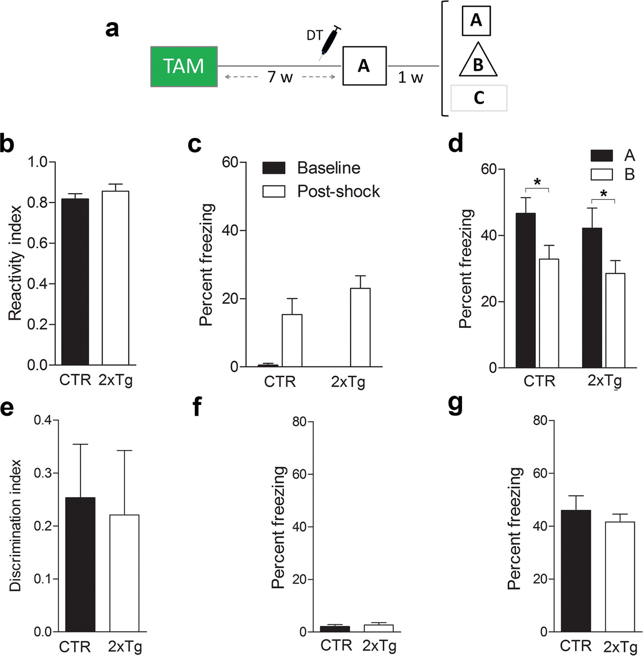Posttraining Ablation Of Adult Generated Neurons Degrades Previously