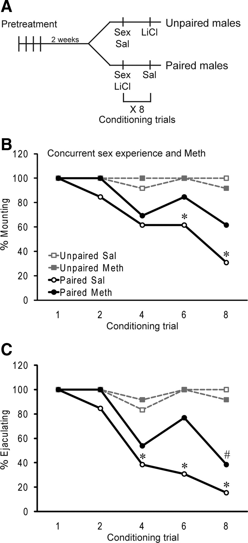 Concurrent Exposure To Methamphetamine And Sexual Behavior Enhances