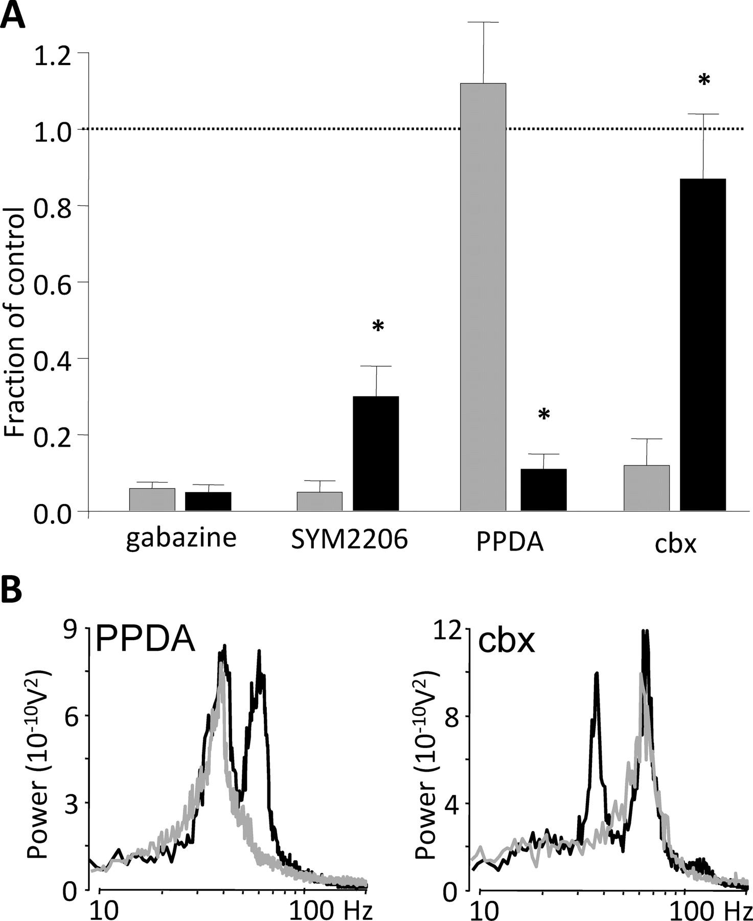Dual gamma rhythm generators control interlaminar synchrony in download figure biocorpaavc