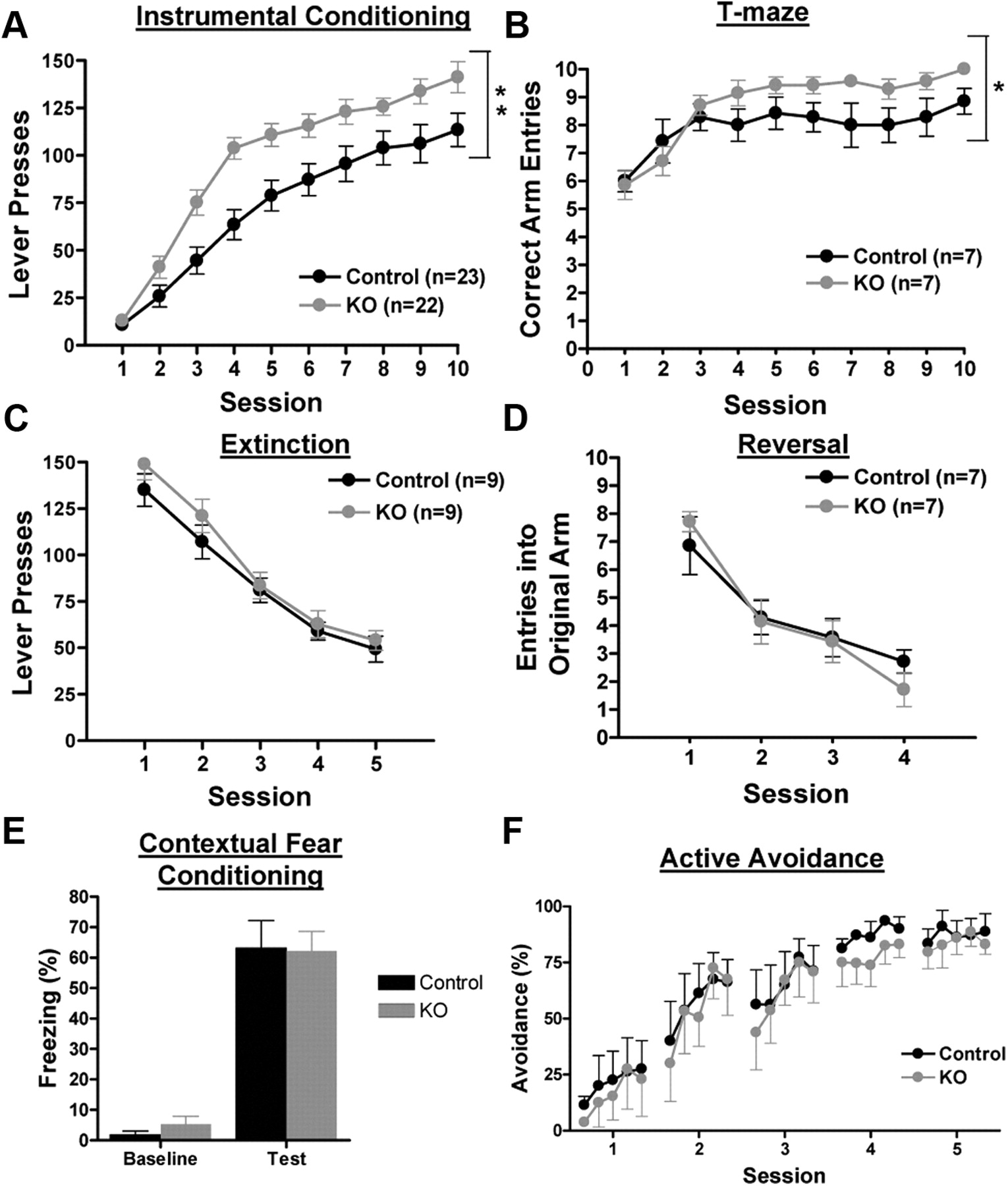 Attenuating GABAA Receptor Signaling in Dopamine Neurons Selectively