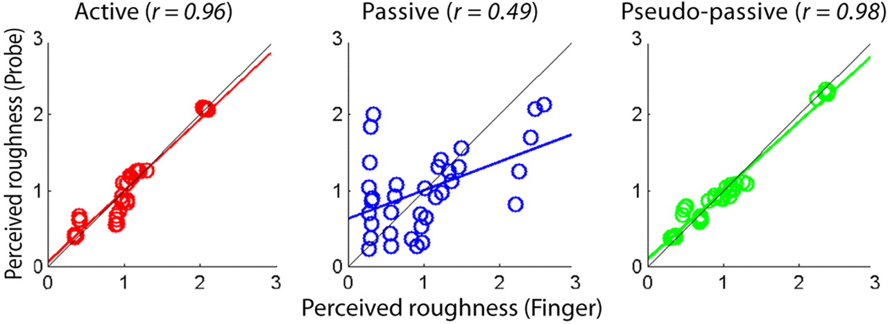 Perceptual Constancy of Texture Roughness in the Tactile System