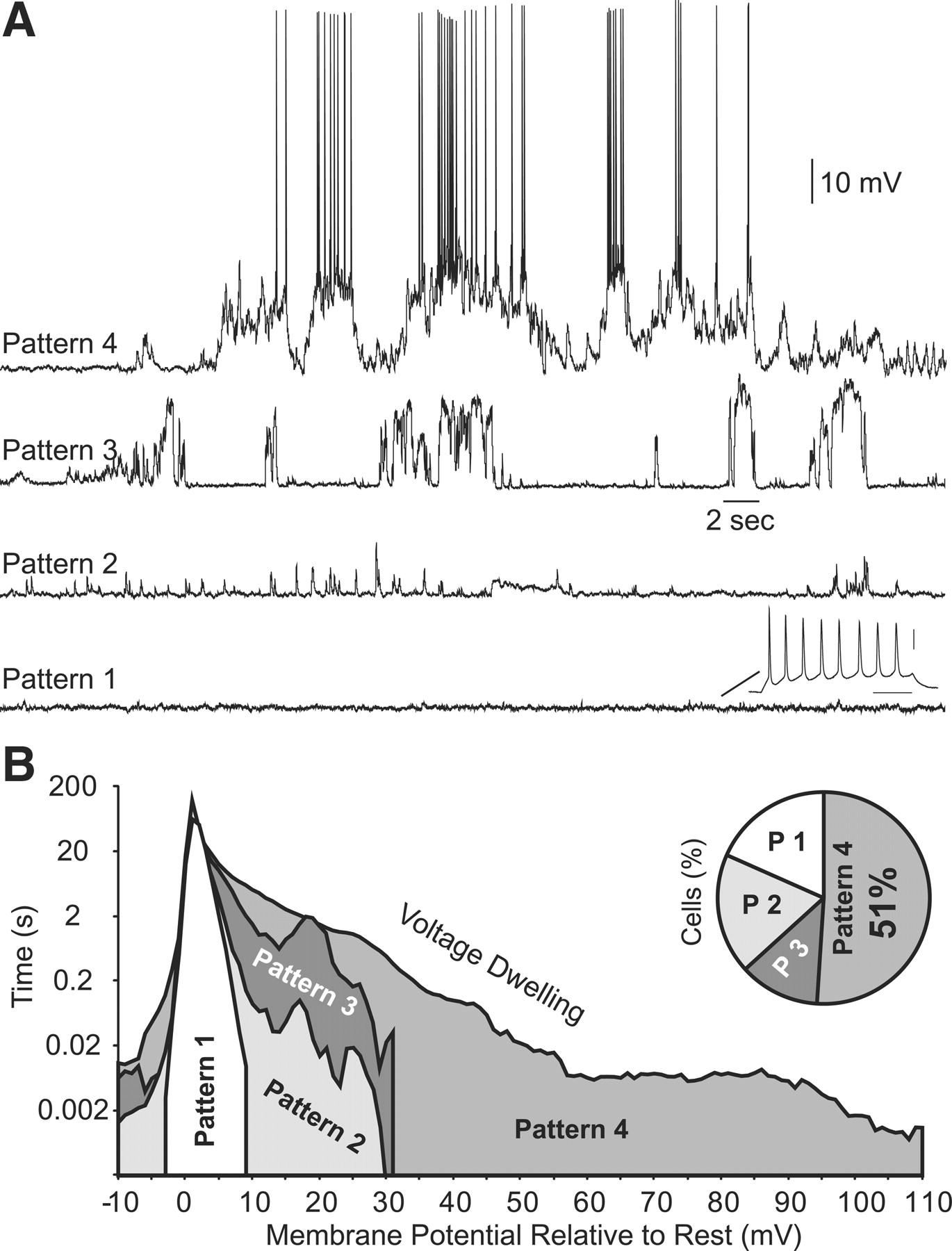 Spontaneous Electrical Activity in the Human Fetal Cortex In Vitro ...