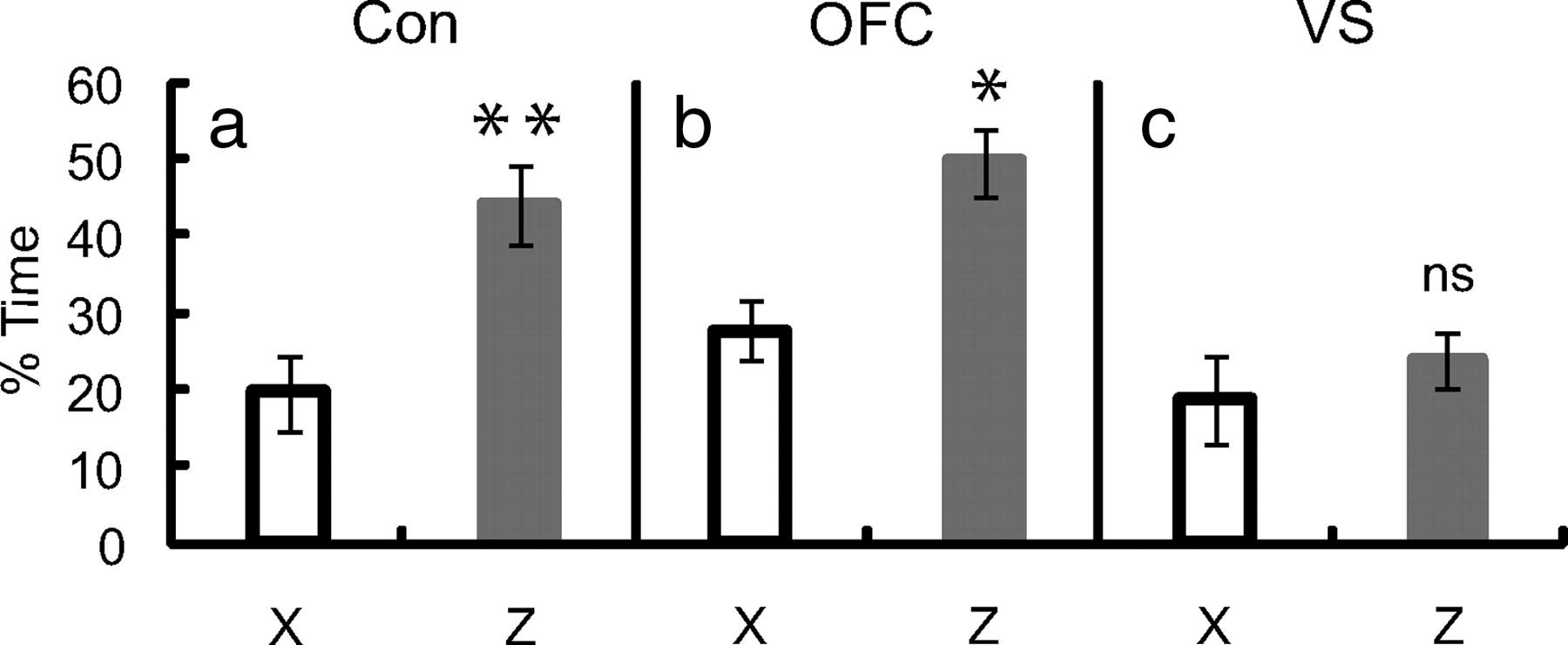 Ventral Striatum and Orbitofrontal Cortex Are Both Required for