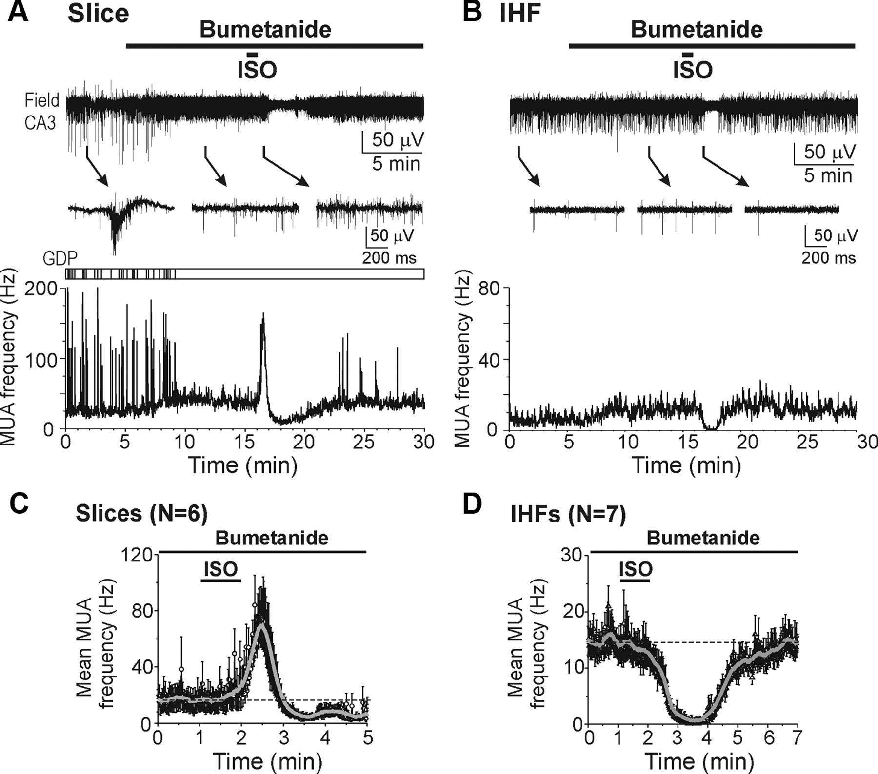 Traumatic Alterations In Gaba Signaling Disrupt Hippocampal Network Ih 454 Wiring Diagram Download Figure