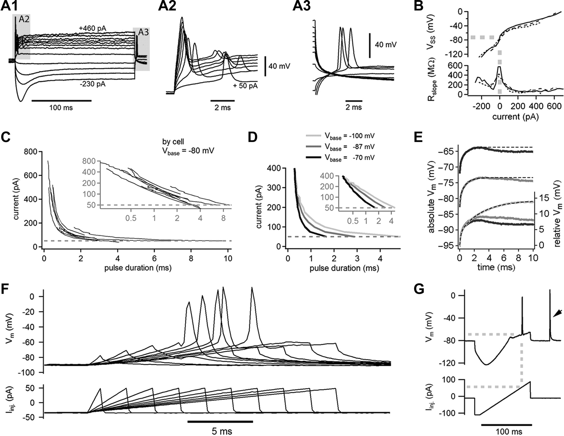 Spike Encoding Of Neurotransmitter Release Timing By Spiral Ganglion The Threephase Bridge Rectifier Pop Ntype Filter Circuit Is Shown As Download Figure Open In New Tab