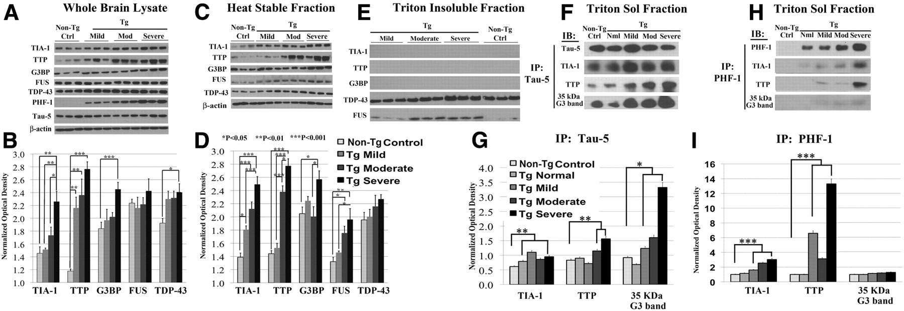 Contrasting Pathology of the Stress Granule Proteins TIA-1 and ...