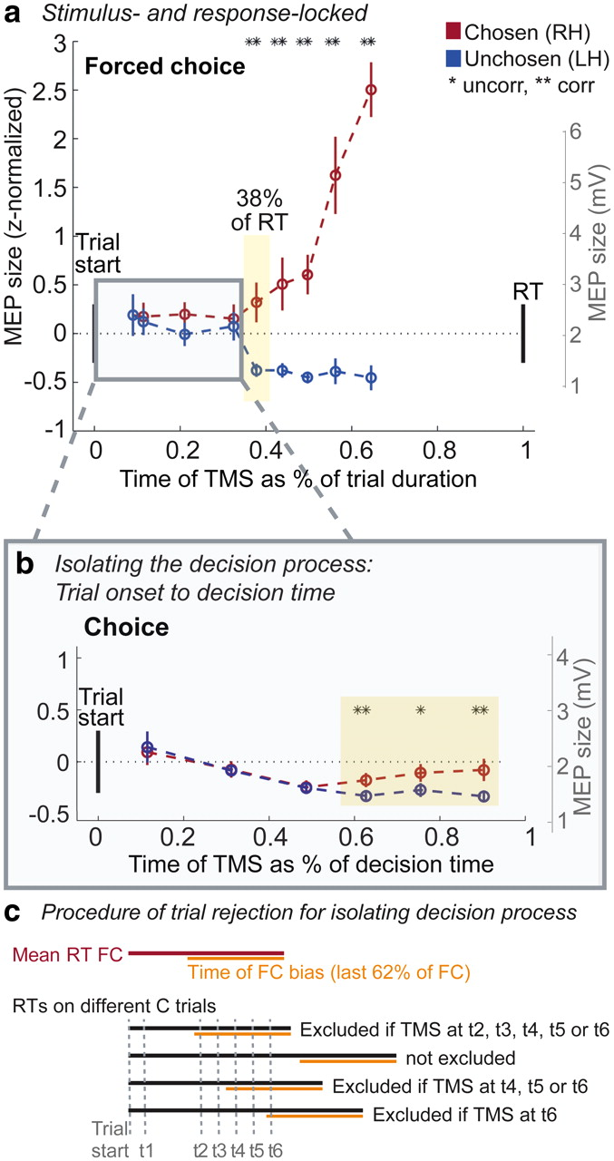 Time-Dependent Changes in Human Corticospinal Excitability