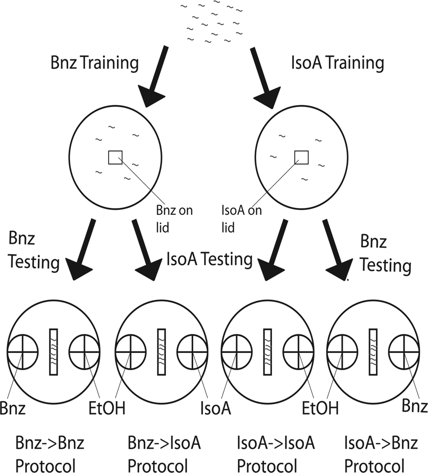 Two Forms of Learning following Training to a Single Odorant in ...