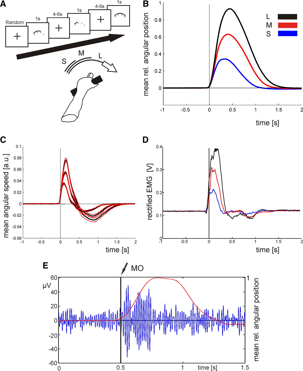 Scaling of Movement Is Related to Pallidal γ Oscillations in ...