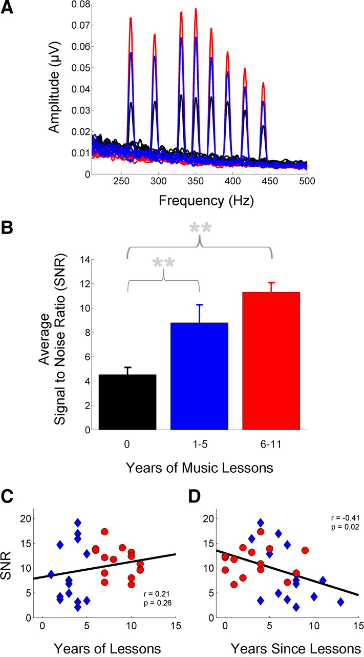 Understanding Music Of Neural >> A Little Goes A Long Way How The Adult Brain Is Shaped By Musical