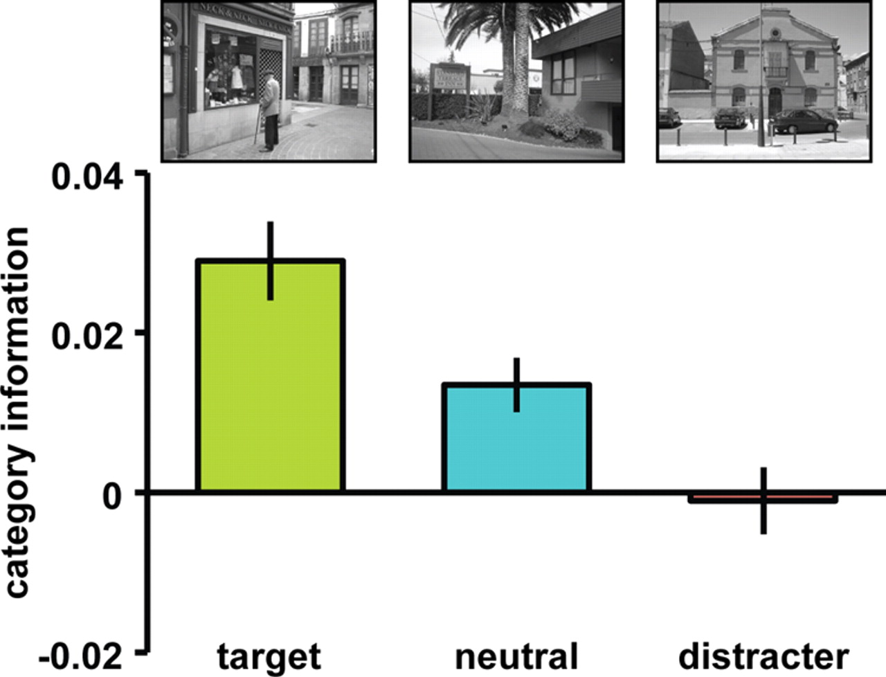 Neural Evidence for Distracter Suppression during Visual