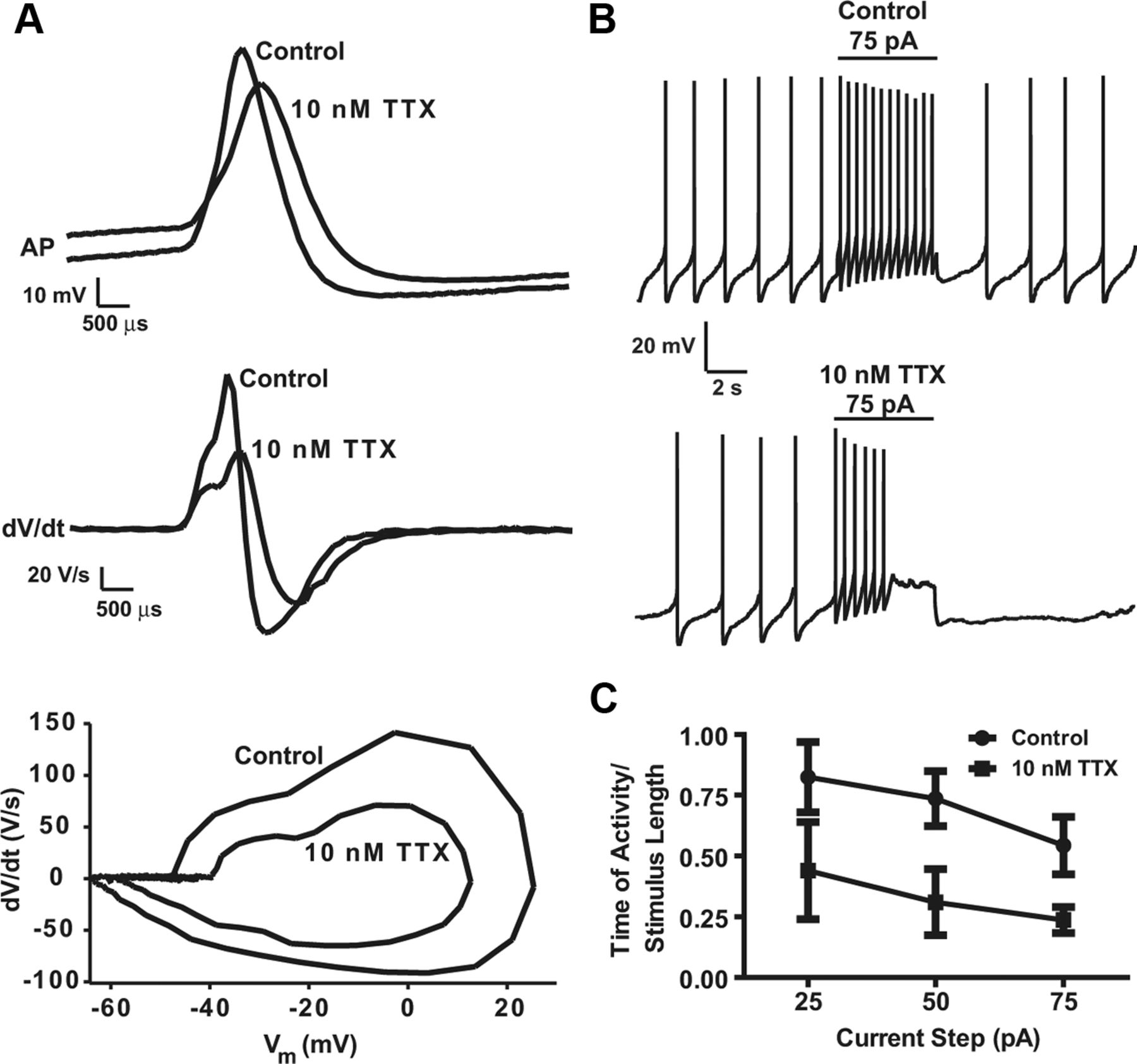 pacemaker rate and depolarization block in nigral dopamine neurons  a somatic sodium channel