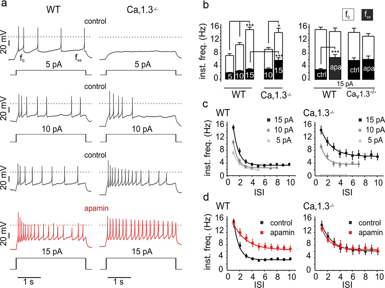 Cav13 Driven Sk Channel Activation Regulates Pacemaking And Spike 555 Timer By Accessing The Enter Frequency Duty Cycle Tab You Download Figure Open In New