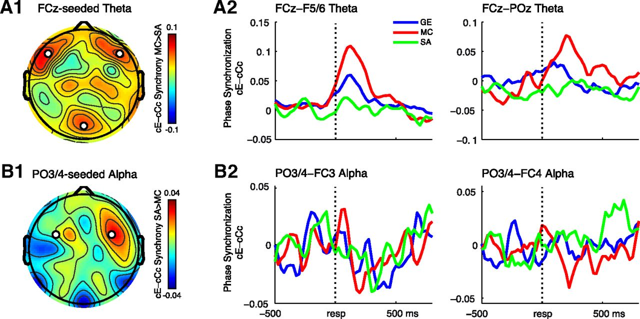 Not All Errors Are Alike: Theta and Alpha EEG Dynamics Relate to