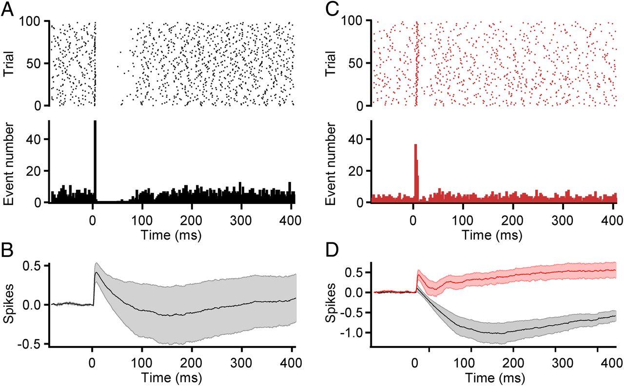 Effects of Climbing Fiber Driven Inhibition on Purkinje