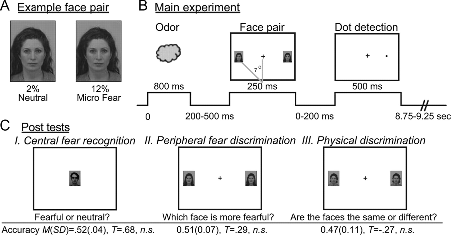 hemispheric asymmetry and emotional expression Keywords: emotion lateralisation hemispheric asymmetry executive functions   is more closely tied to emotional experience or expression.