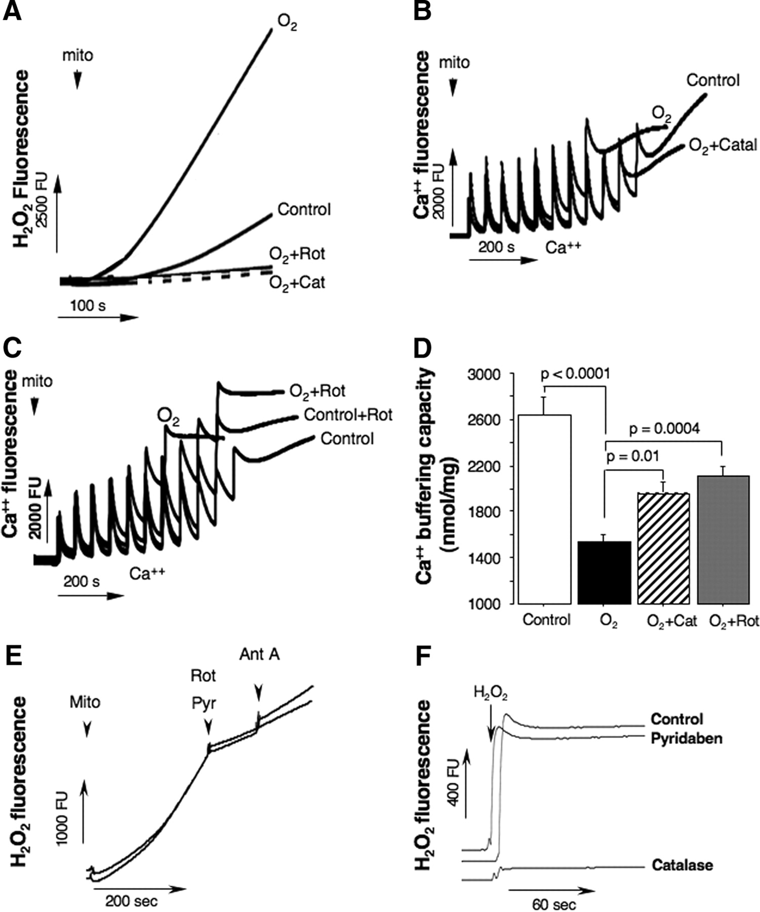 The Oxygen Free Radicals Originating from Mitochondrial