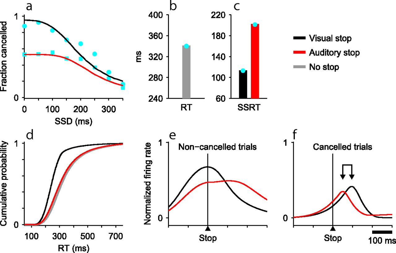 The Countermanding Task Revisited: Fast Stimulus Detection