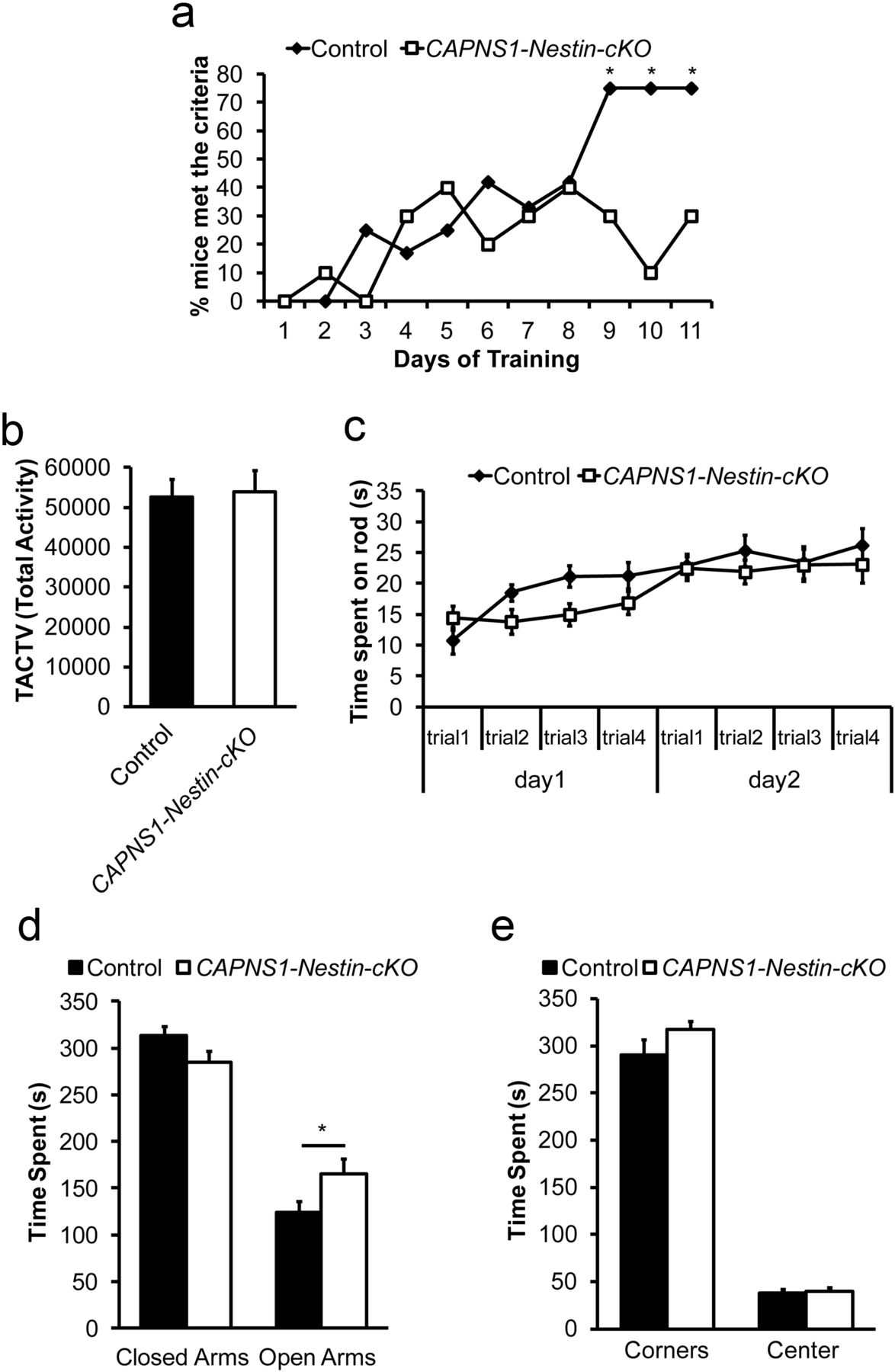 conditional disruption of calpain in the cns alters dendrite