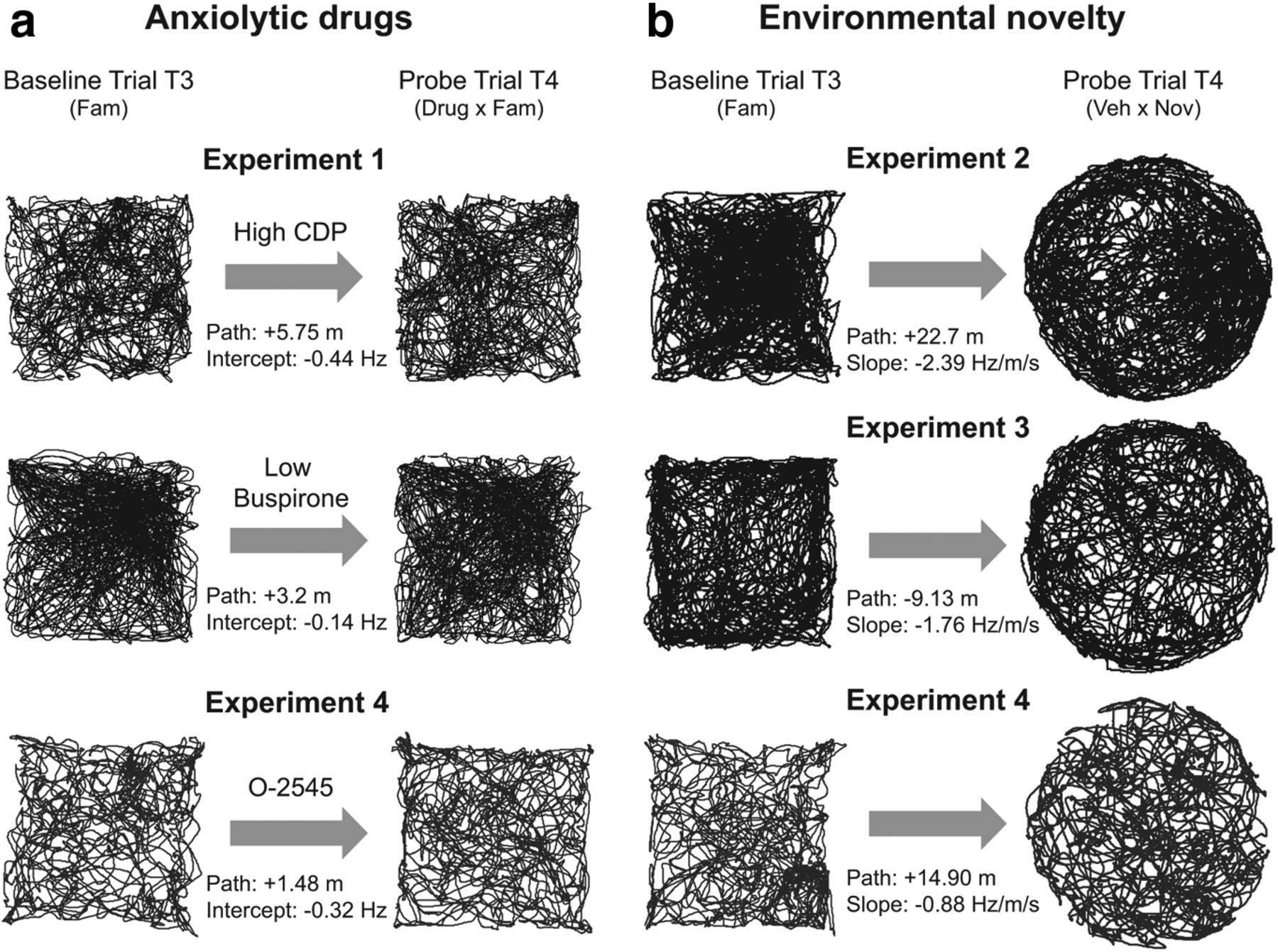 Novelty and Anxiolytic Drugs Dissociate Two Components of