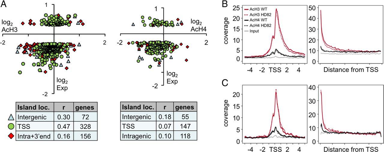 Genomic Landscape Of Transcriptional And Epigenetic Dysregulation In