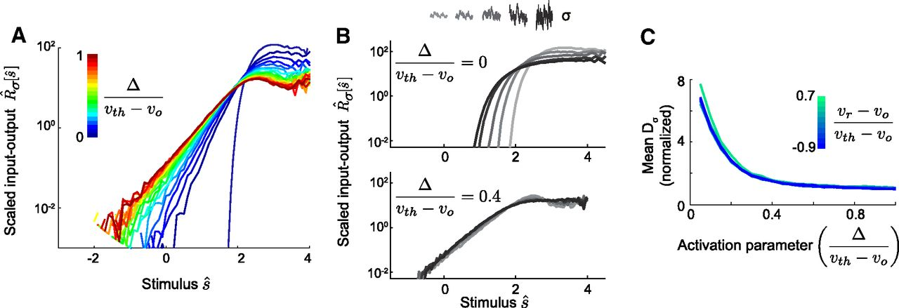 Emergence of Adaptive Computation by Single Neurons in the