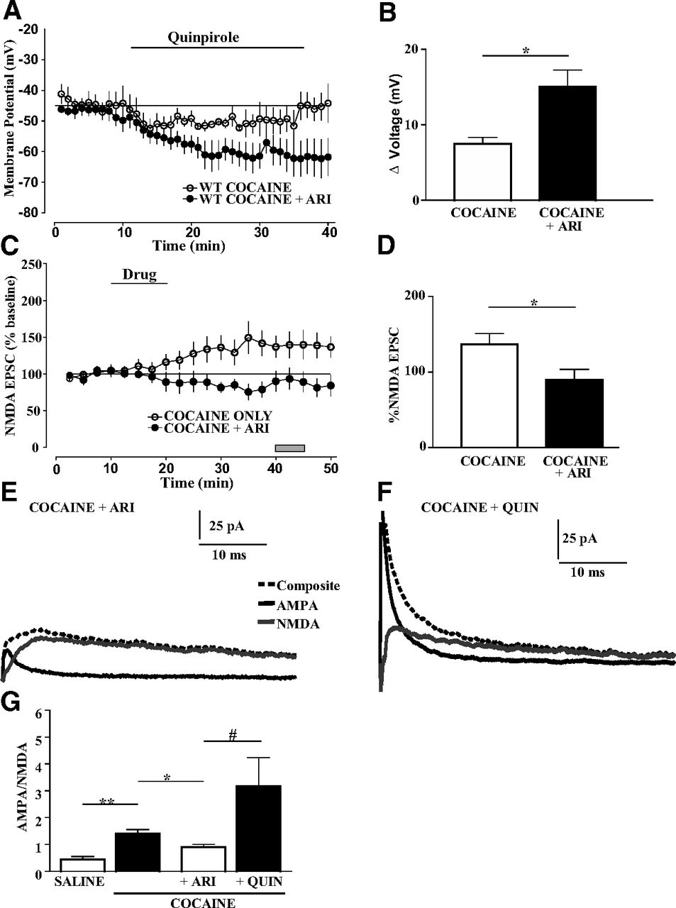 Loss of D2 Dopamine Receptor Function Modulates Cocaine
