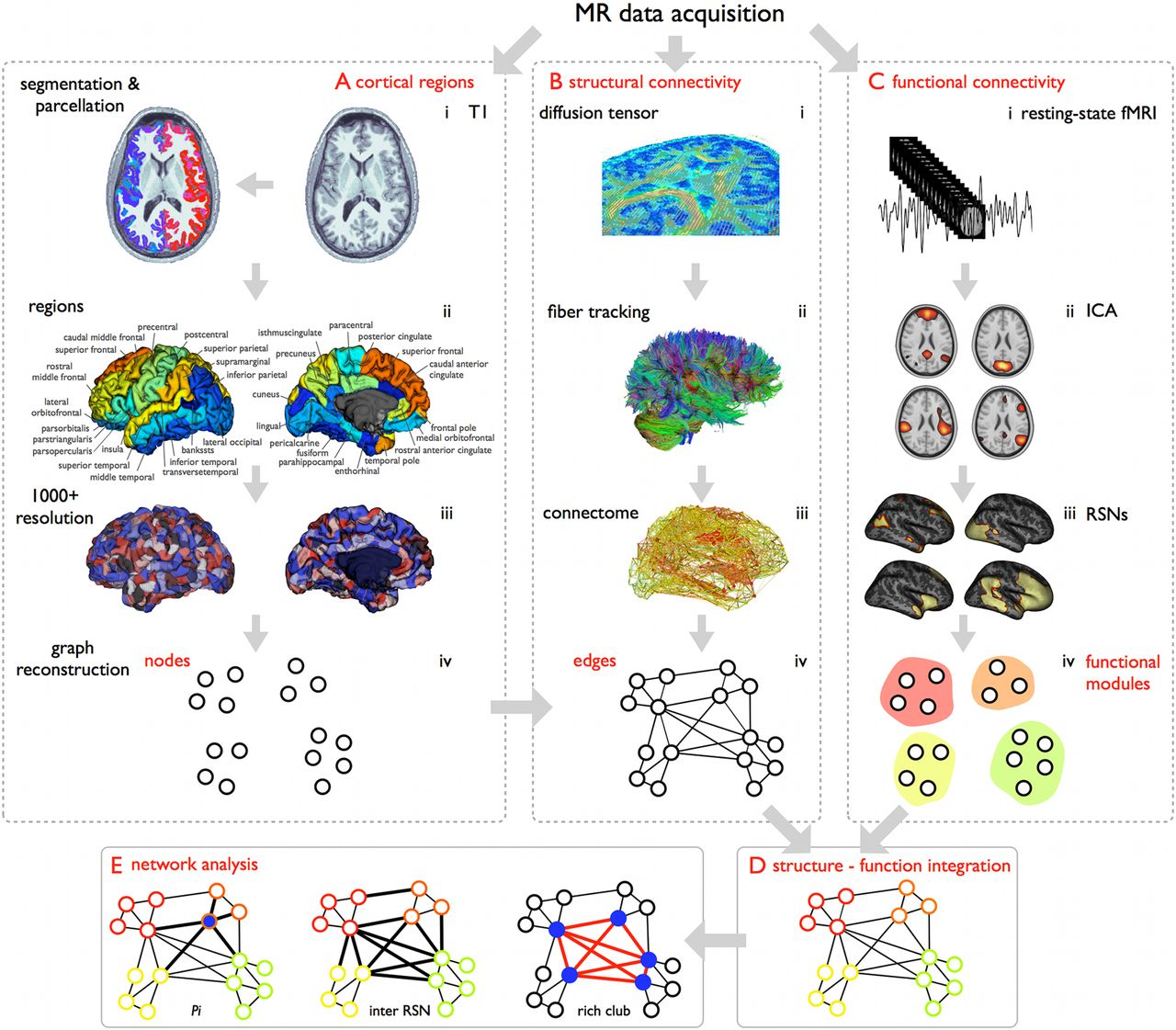 An Anatomical Substrate For Integration Among Functional Networks In