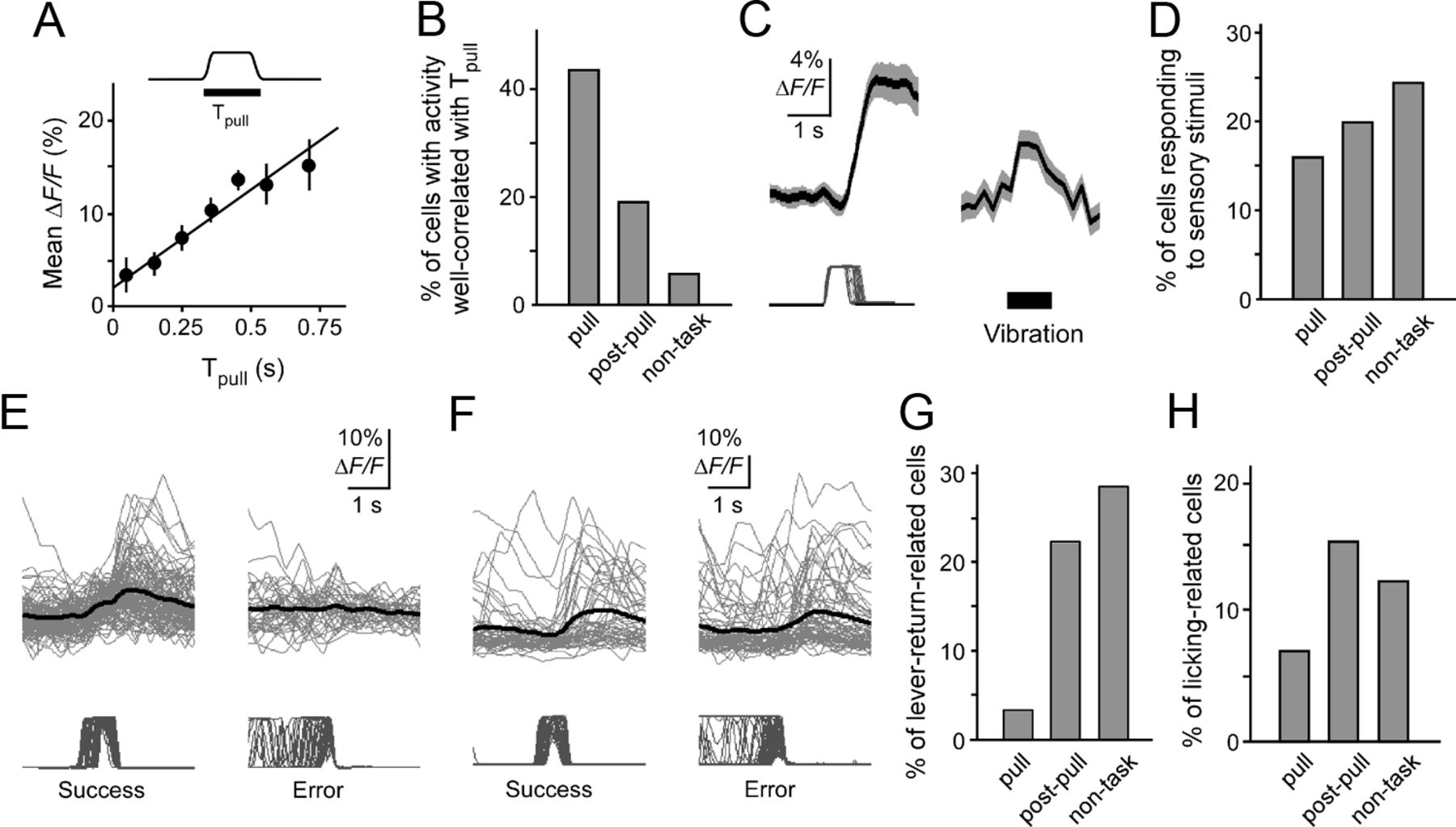 Spatiotemporal Dynamics of Functional Clusters of Neurons in