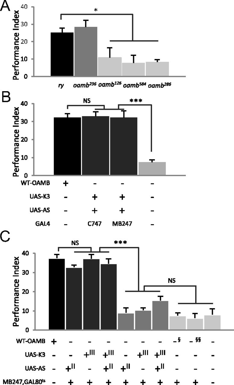 Appetitive learning requires the alpha1 like octopamine receptor download figure pooptronica Images