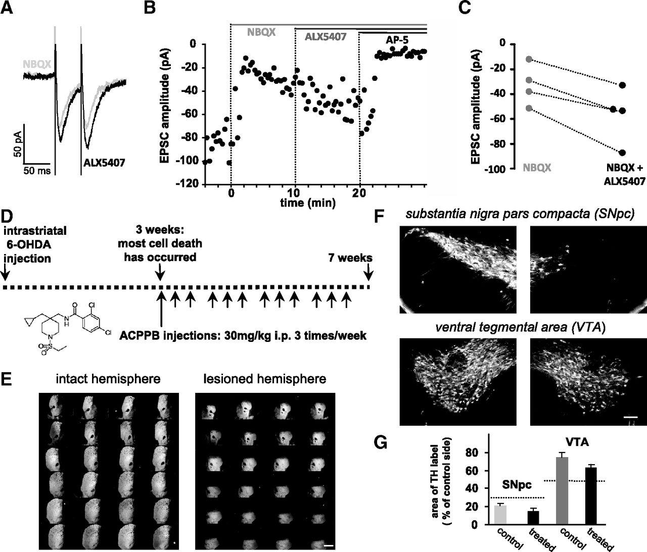 Glycine Transporter 1 Inhibition Promotes Striatal Axon Sprouting 11221 Blackbox Relationship Diagram Download Figure