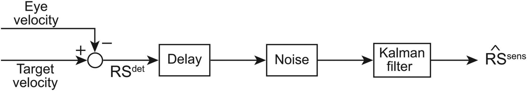 Kalman Filtering Naturally Accounts for Visually Guided and