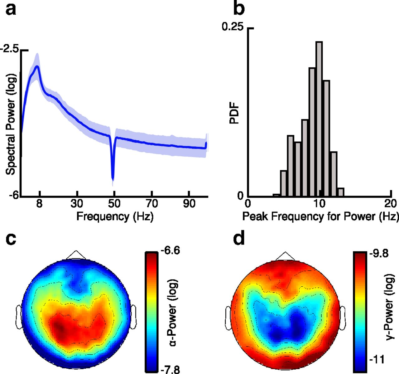 The Phase of Thalamic Alpha Activity Modulates Cortical