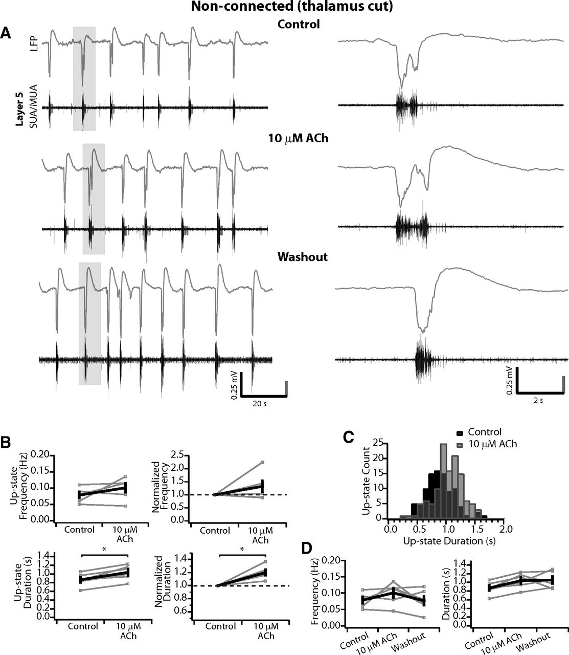 Differential modulation of spontaneous and evoked thalamocortical download figure pooptronica