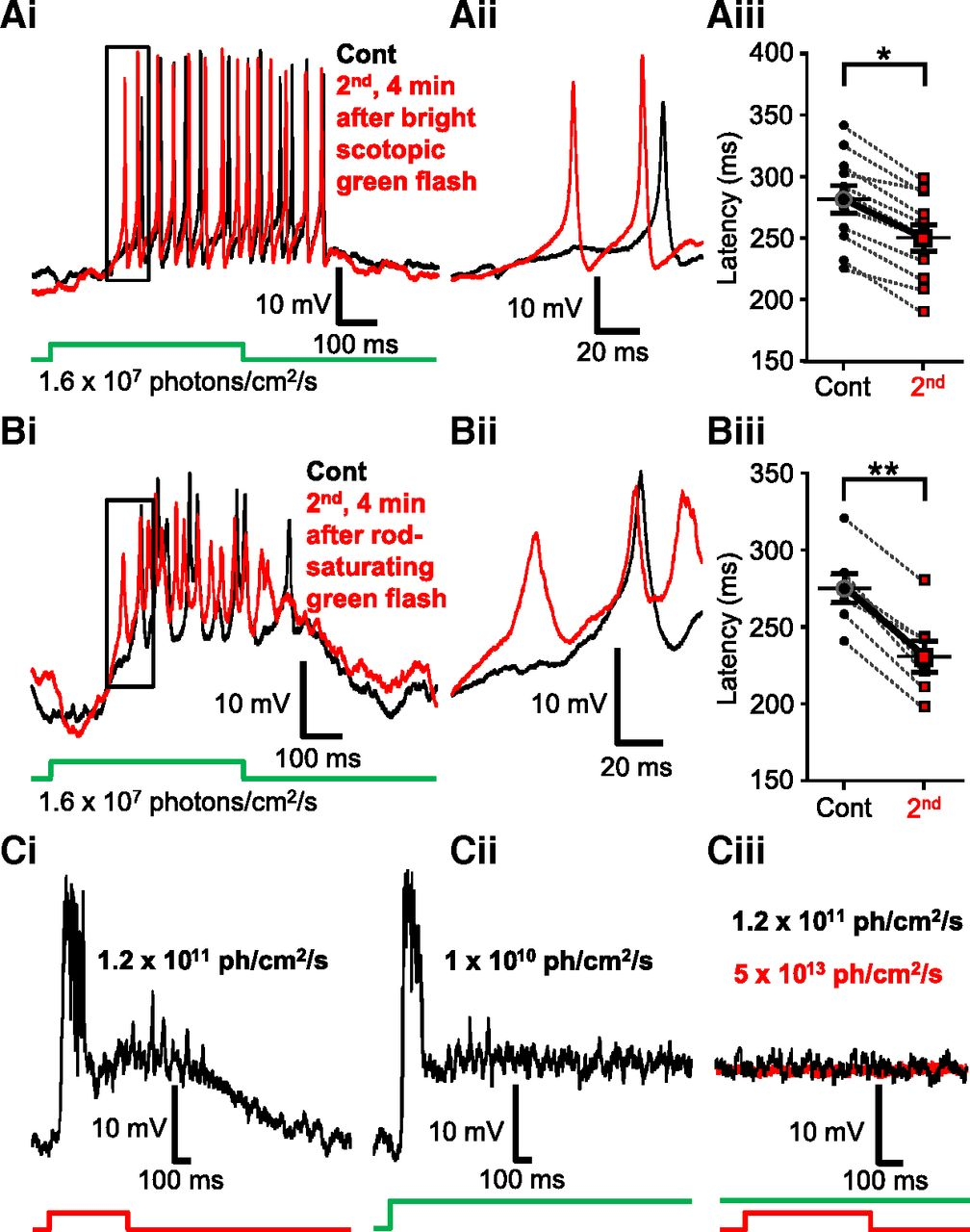 Nitric Oxide Mediates Activity Dependent Plasticity Of Retinal Figure 417b Capacitor Filter Circuit Positive And Negative Half Download