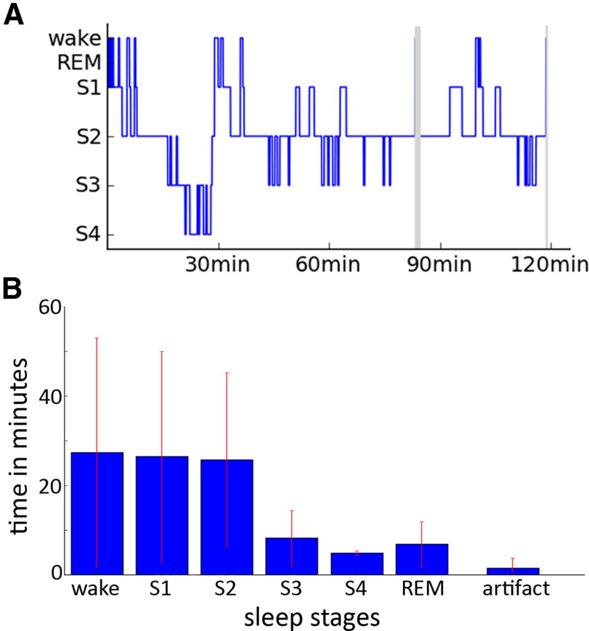Memory Consolidation by Replay of Stimulus-Specific Neural