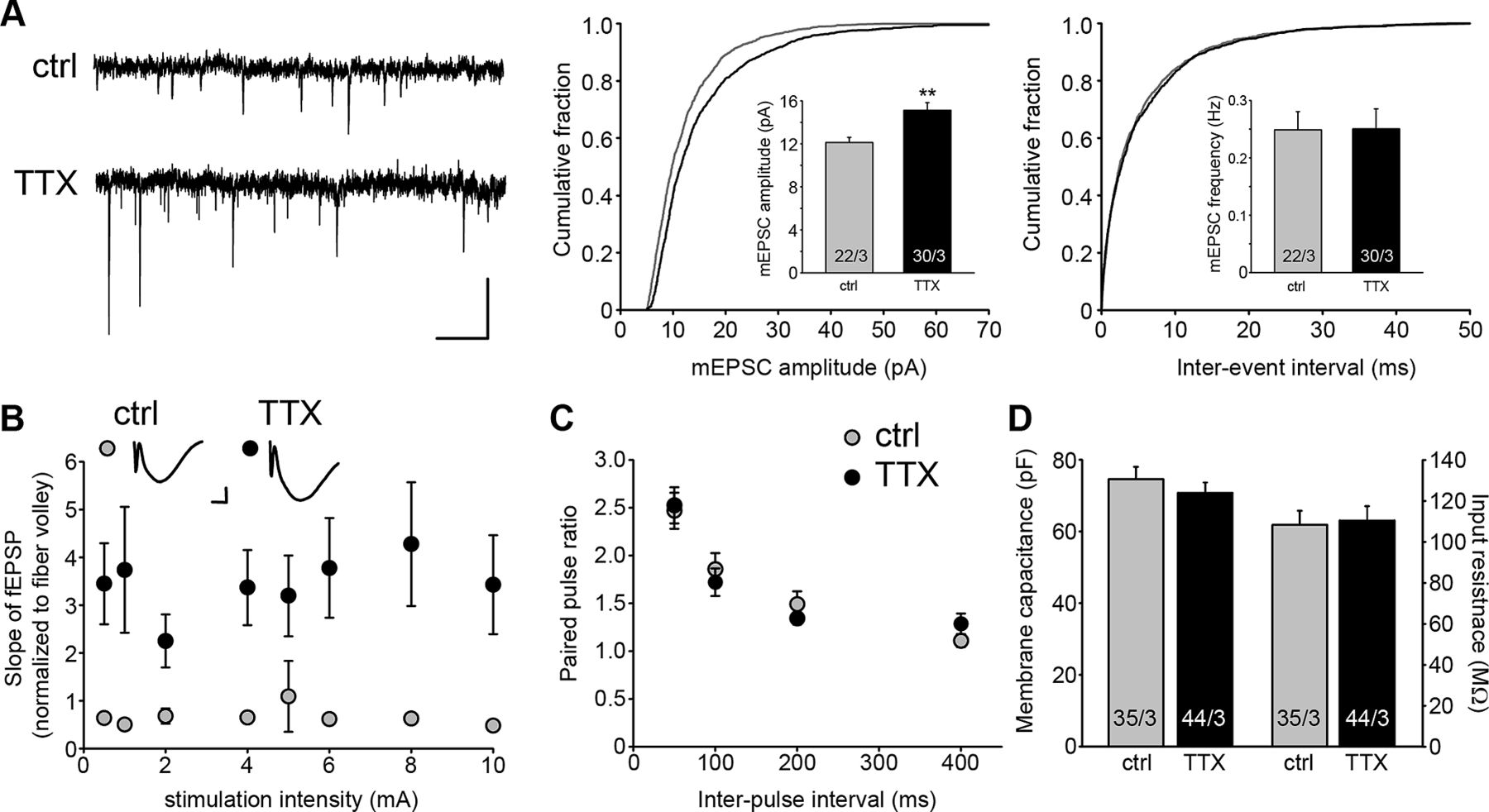 chronic inactivation of a neural circuit enhances ltp by inducing silent synapse formation