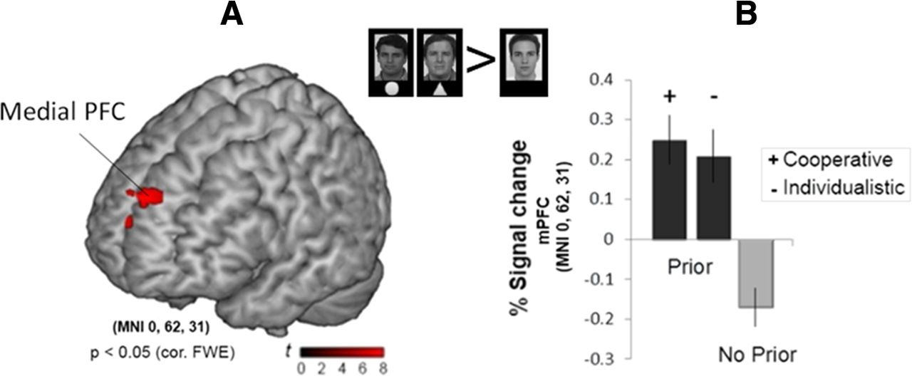 Reputational Priors Magnify Striatal Responses to Violations