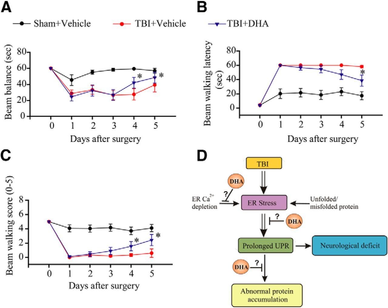 Docosahexaenoic Acid Reduces Er Stress And Abnormal Protein Tsubaki Wiring Diagram Download Figure