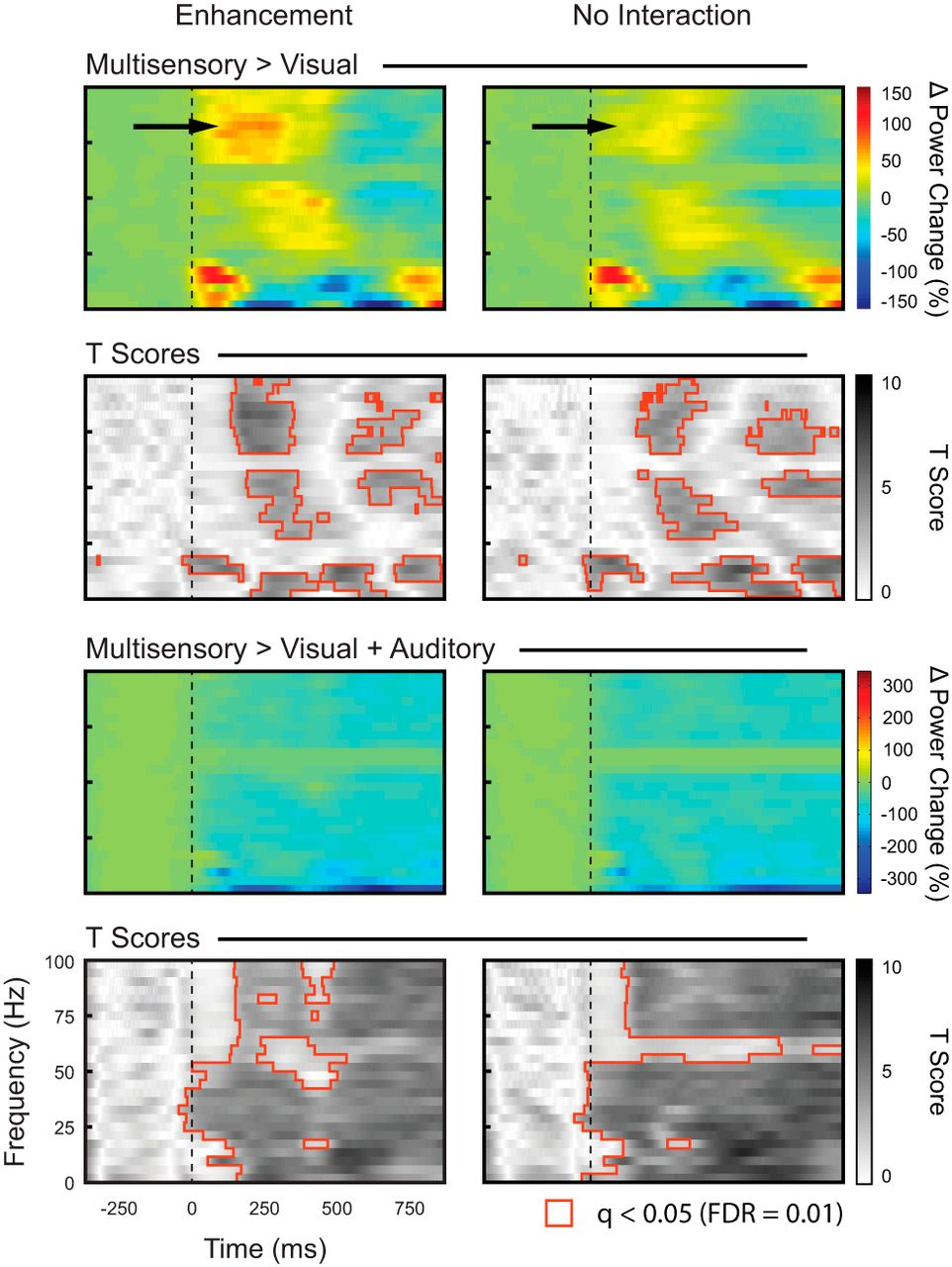 Multisensory Response Modulation in the Superficial Layers of the