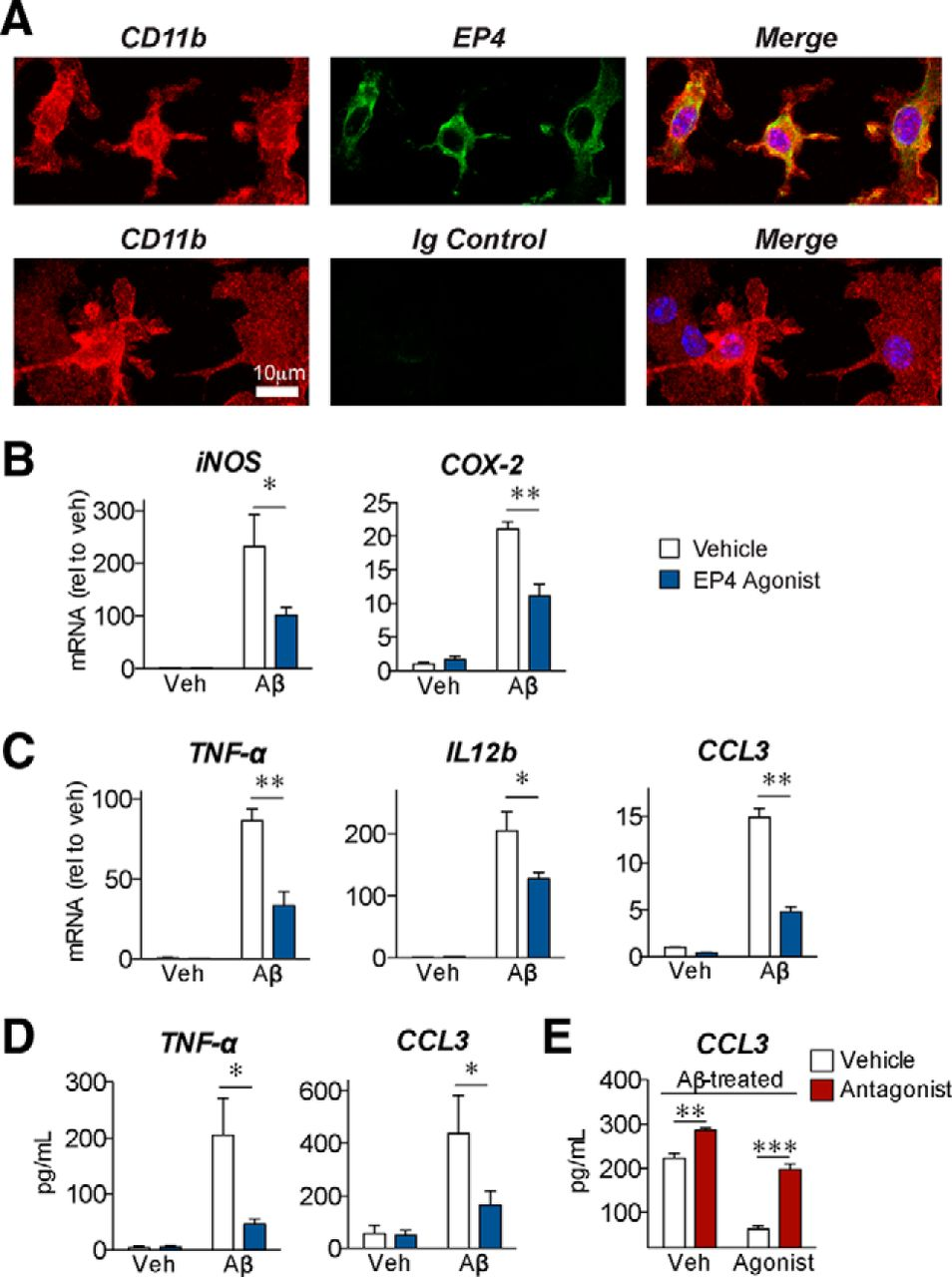 Suppression of Alzheimer-Associated Inflammation by