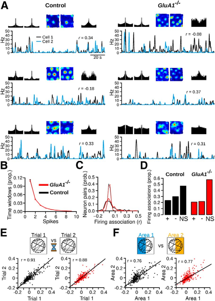 Impaired path integration and grid cell spatial periodicity in impaired path integration and grid cell spatial periodicity in mice lacking glua1 containing ampa receptors journal of neuroscience gamestrikefo Choice Image